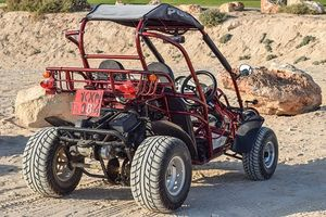 Buggies 4x4 - 93929 prices