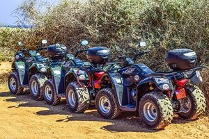 Trike Excursion - 72625 discounts
